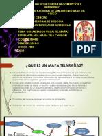 MAPA DE TELARAÑAS.pptx