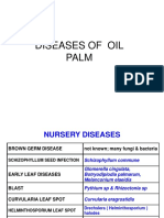 Diseases of Oil Palm Pictures Pps