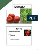 9. Tomato.pdf