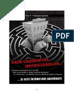 251856507-Ilias-Papageorgiadis-Prin-labirintul-imobiliarelor-e-book-pdf.pdf