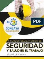 Brochure Cursos Obligatorios