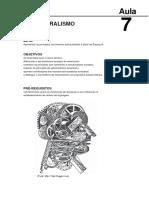 Aula - estruturalismo.pdf