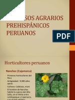Procesos Agrícolas Prehispánicos