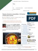 ▷ Plantas Silvestres Comestibles_ ✅ 10 hierbas y flores para cocinar