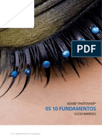 Os 10 Fundamontos Do Photoshop
