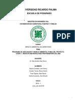 PAMA PROYECTO COSAC.docx