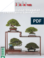 Bonsai Pasion N103 Abril 2019