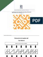 Extraccion de liquidos del gas natural CIED Introduccion.pdf
