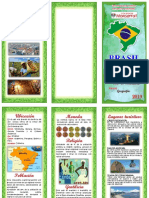 Triptico Brazil