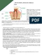 infectiiledentare1-prelucrat21