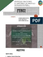 Fungio