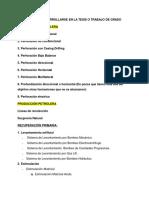 TEMAS A DESARROLLARSE EN LA TESIS O TRABAJO DE GRADO (2).docx