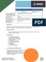 Guia de Practicas Bioquimica Gluco Final