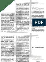 revista peregrino 2.docx