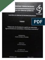 ArellanoPeralesCarla.pdf
