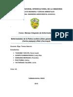 UNIVERSIDAD NACIONAL INTERCULTURAL DE LA AMAZONIA.docx