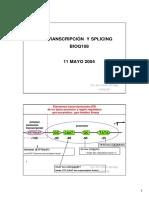 Transcripción y Splicing 1