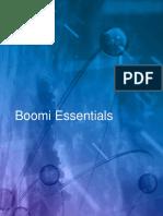 Boomi Essentials Guide V1.1 PDF.pdf