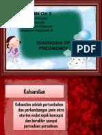diagnosa kehamilan.pptx