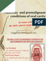 Oralprecancerouslesions
