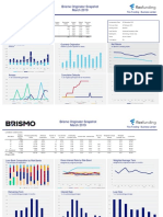 Brismo Analytics Loan Vintage Analysis