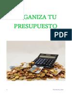 Organiza Tu Presupuesto