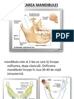 OSIFICAREA MANDIBULEI.pptx
