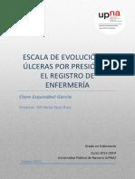 Escala de Evolución Ulceras Por Presión en Registro de Enfermería