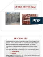 Braced Cut and Coffer Dam