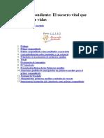 Primer Respondiente PDF