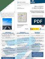 buenas_practicas_prevenir_mitigar_incursiones_pista.pdf