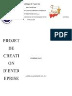 projet entreprise.docx