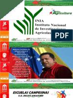 TALLER DE BIOFERTILIZANTES, IMPORTANCIA, ELABORACIÓN Y APLICACIÓN.ppsx