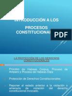 Introducción a Los Procesos Constitucionales