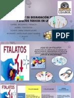 Expocicion de Ftalatos