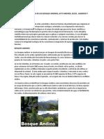 Restauracion ecologica de los bosques