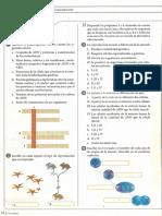taller-reproduccion-celular-y-tipos-de-reproduccion.pdf