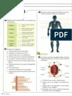taller-sistema-inmunologico.pdf