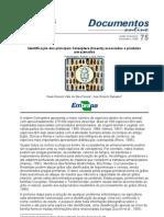 Identificação dos principais Coleoptera associados a produtos armazenados