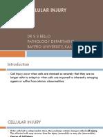 (1)Introduction to Pathology
