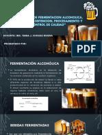 Fermentacion Alcoholica