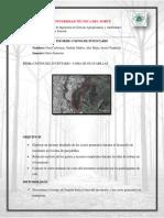 MEJIA_INFORME_COSTOS.pdf