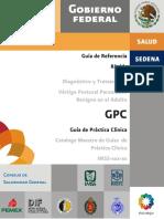 VertigoPPB.pdf