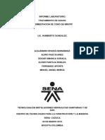 Informe Laboratorio Cantidad de Solidos 1
