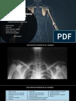 Anatomia Radiologica Extremidades Superiores