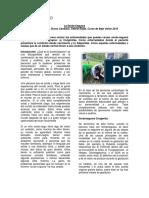 Sordoceguera.pdf