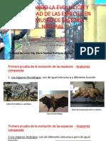 cURSO BIOLOGIA 2018