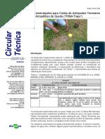 Recomendações para Coleta de Artrópodes Terrestres por Armadilhas de Queda ( Pitfall-Traps ).pdf