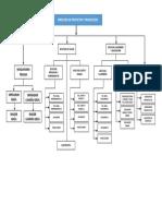 ORGANIGRAMA 2.docx