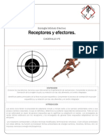 BE_05_ReceptoresEfectores-R.pdf